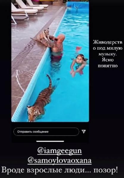 Фото №1 - «Живодерство под милую музыку»: Джигана осудили за видео с тиграми в доме