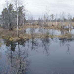 Фото №1 - Ранняя весна принесла большую воду