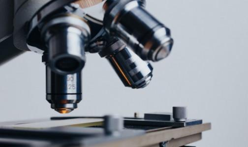 Фото №1 - Ученые создали тест-систему для выявления рака простаты за 20 минут