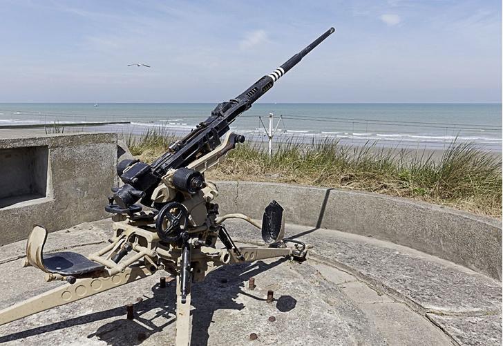 Фото №14 - Заповедник войны: путешествие на остров Тютерс