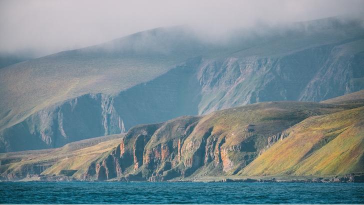 Фото №2 - Командорские острова: край мира или рай на земле?