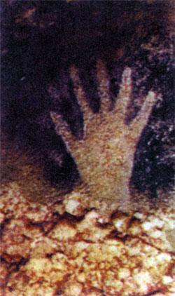 Фото №3 - В последние минуты каменного века