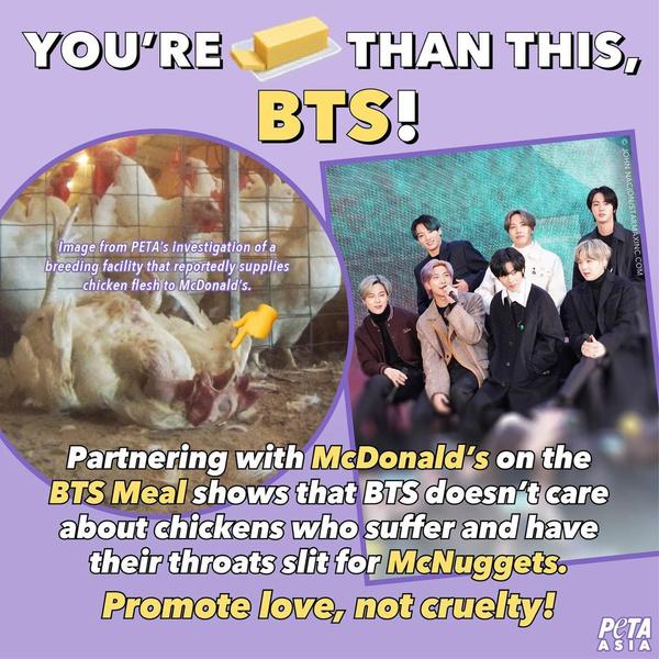 Фото №2 - BTS обвинили в пропаганде жестокого обращения с животными