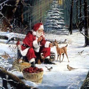 Фото №1 - Деды Морозы пустились в ежегодное путешествие