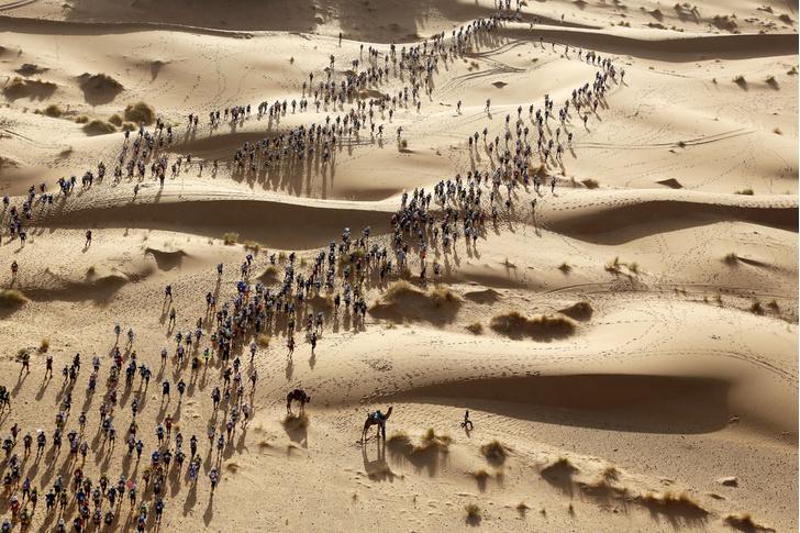 Фото №4 - Пустыня: перезагрузка