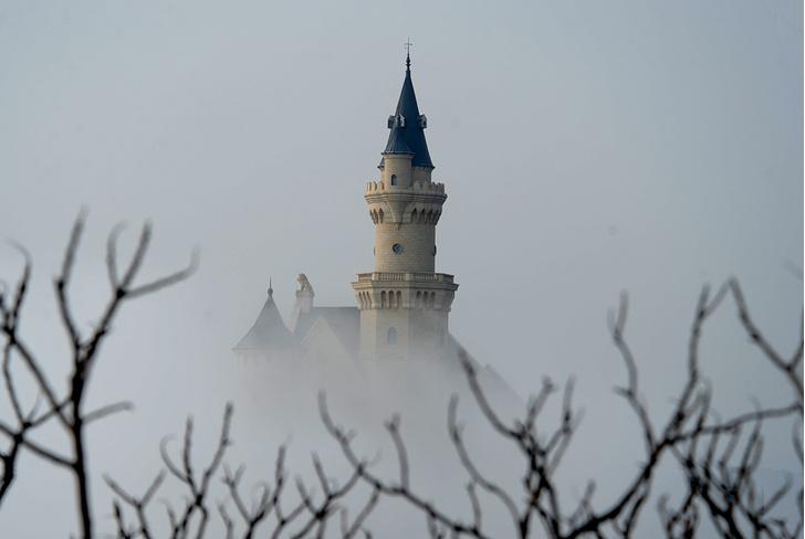 Фото №1 - Призрак замка