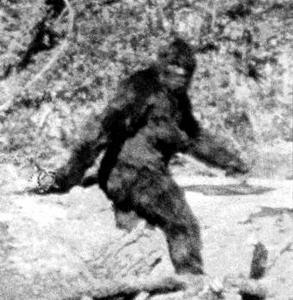Фото №1 - Ученые из США отправятся на поиски снежного человека