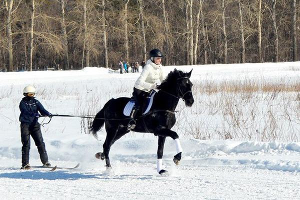 Фото №24 - Девушки на коне: самые романтичные наездницы Ульяновска