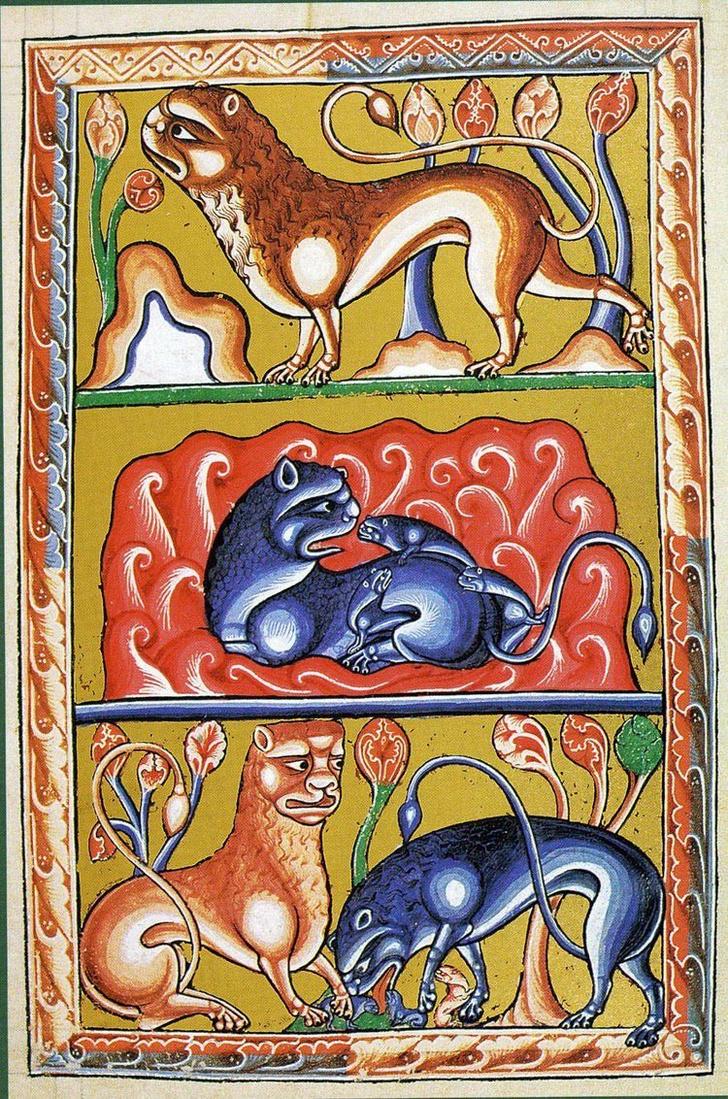 Фото №14 - Как в старину художники изображали животных, которых никогда не видели (25 странных существ)