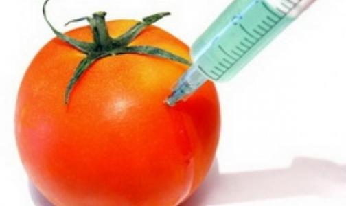 Фото №1 - Стакан молока вместо продуктов с ГМО