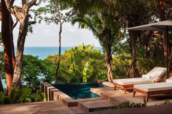 Фото №9 - Отель в тропическом лесу в Мексике