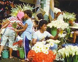 Фото №2 - Манила — Вавилон на Пасиге