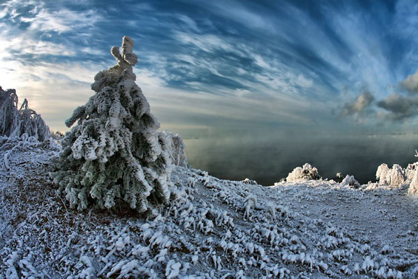Фото №10 - К Новому году сама природа замирает