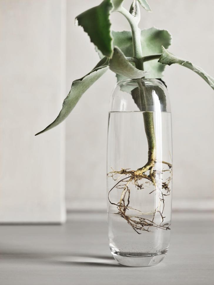 Фото №6 - Una: вазы-трансформеры Катерины Соколовой для марки Bolia