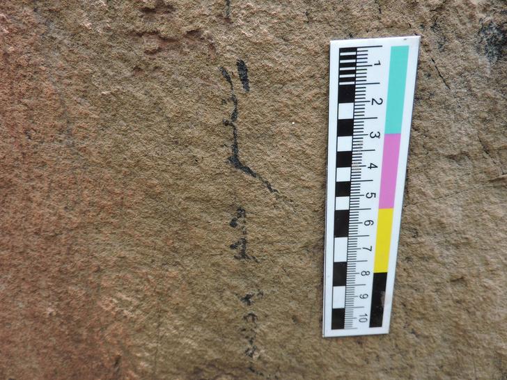 Фото №1 - На Шалаболинской писанице нашли новые петроглифы