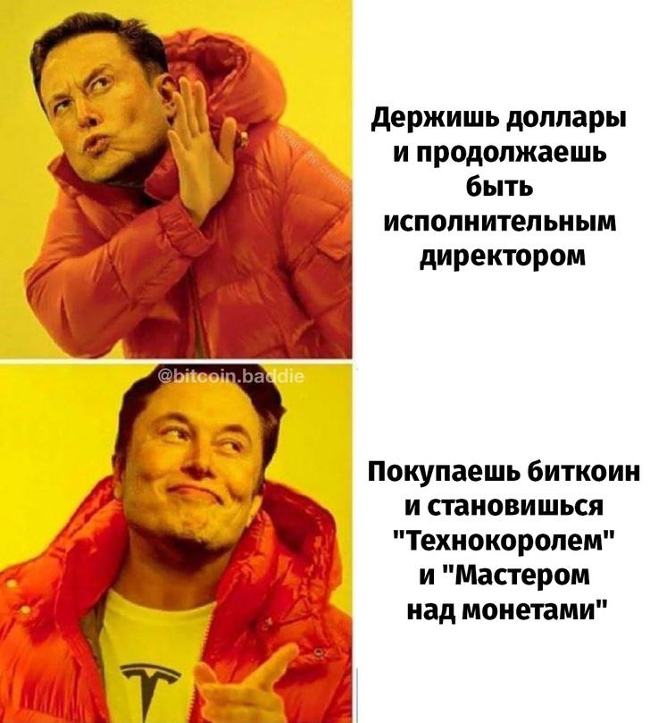 Фото №5 - Новый трек Маска и отборные шутки про Илона— «Технокороля» и его «Мастера над монетой»