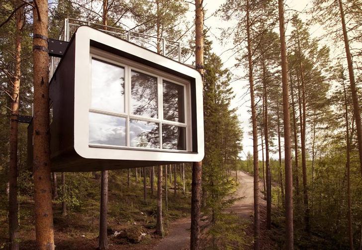 Экотренд: отели на деревьях (фото 16)