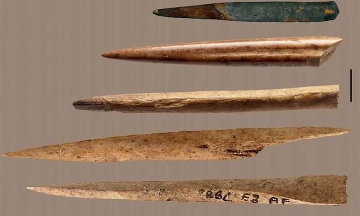 Фото №1 - Ученые узнали, кости каких животных шли на изготовление наконечников древних орудий