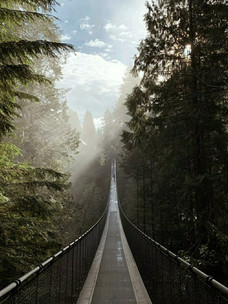 Фото №9 - Тест: Выбери мост, и мы скажем, куда он тебя приведет