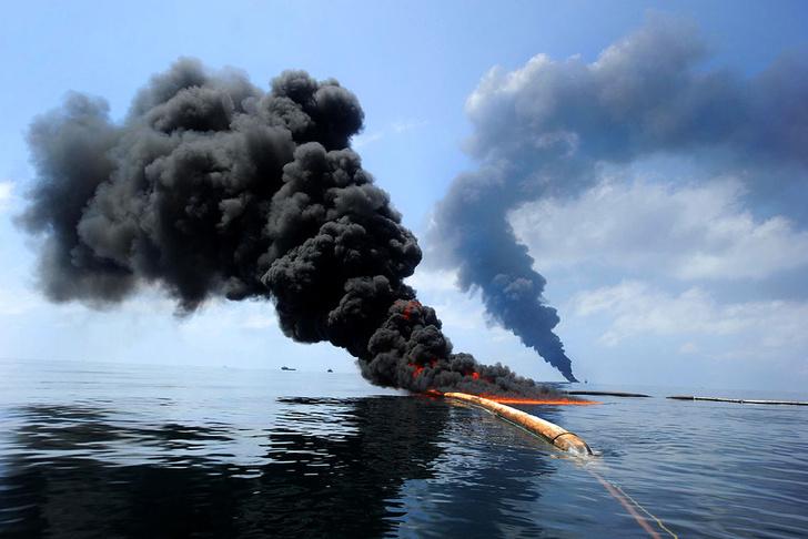 Фото №1 - Подсчитан ущерб от разлива нефти вМексиканском заливе