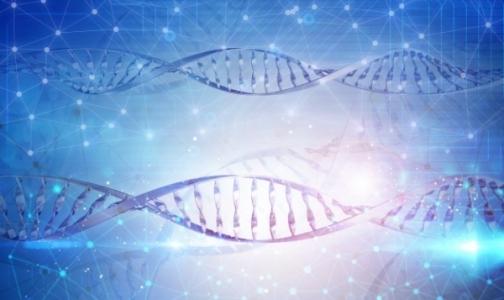 Фото №1 - Генетики СПбГУ и врачи помогли семье с редкой патологией родить здорового ребенка