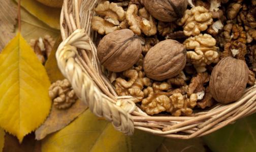 Фото №1 - Ученые выяснили, что любовь к орехам помогает не толстеть
