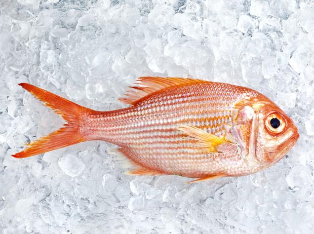 Фото №3 - 10 видов рыбы, которую лучше не есть