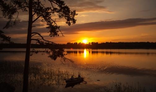 Фото №1 - Где можно купаться в Ленобласти без вреда для здоровья