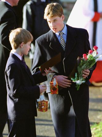 Фото №3 - Начало конца: как развод родителей повлиял на отношения Гарри и Уильяма