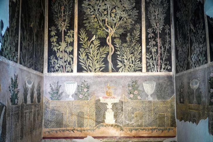 Фото №1 - В Помпеях открыли новые сокровища