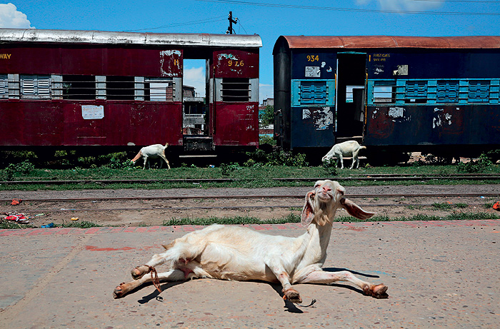 Фото №1 - Прибытие поезда: фоторепортаж из Непала