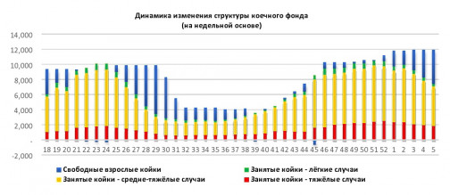 """Число госпитализаций снизилось на 34%, летальность тоже ушла вниз: В Петербурге подвели """"коронавирусные итоги"""" месяца"""
