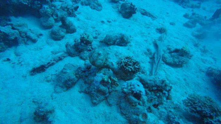 Фото №1 - У берегов Египта обнаружен затонувший корабль XVIII века