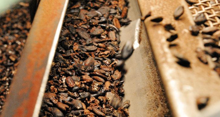 Фото №4 - Всё в шоколаде: репортаж с кондитерской фабрики