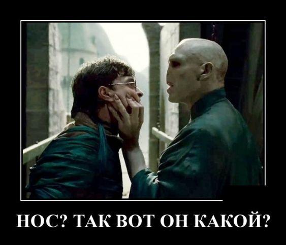 Фото №1 - Лучшие шутки и анекдоты про Гарри Поттера