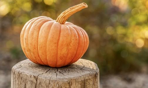 Фото №1 - Тыква не только для Хэллоуина: полезно все, кроме свежевыжатых соков