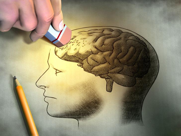 Фото №1 - Мозг человека запоминает новую информацию, стирая старую