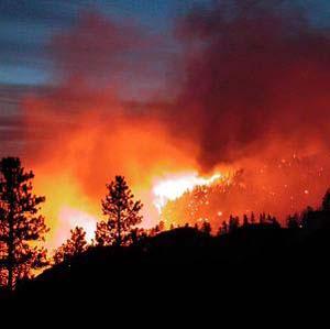 Фото №1 - В Сибири насчитывается минимум 13 лесных пожаров