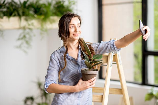 Фото №1 - Почему погибают комнатные растения, купленные в магазине