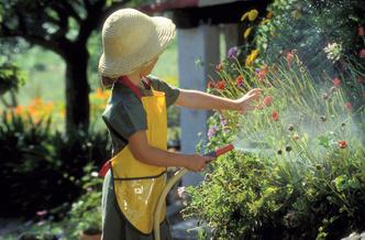 Фото №1 - Во саду ли, в огороде