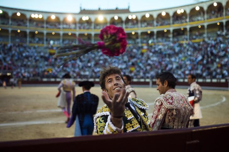 Фото №1 - Победа над быком