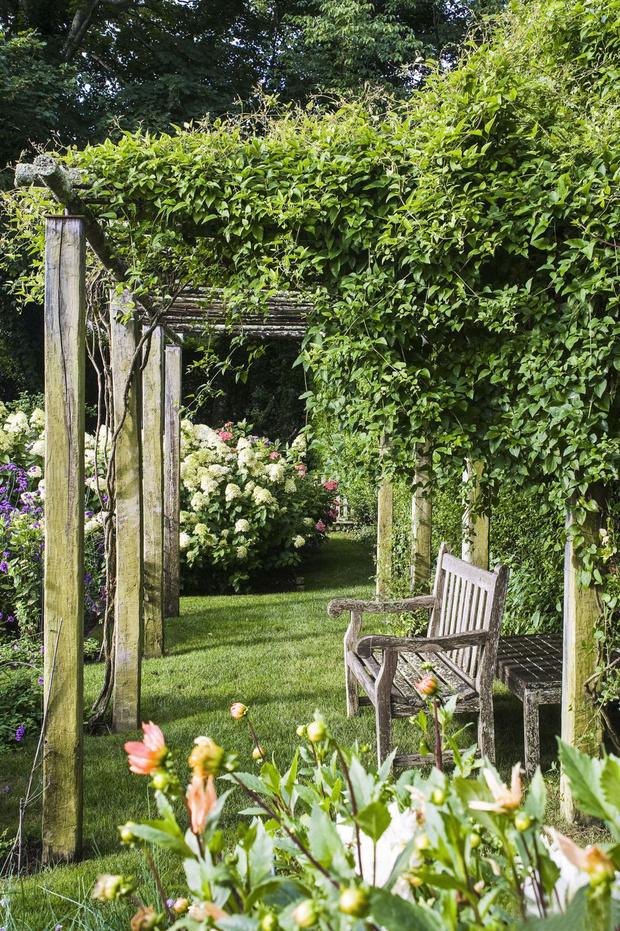 Рядом с беседкой цветут георгины, клематисы, гортензии. Cкамейка, Bayberry Nursery.