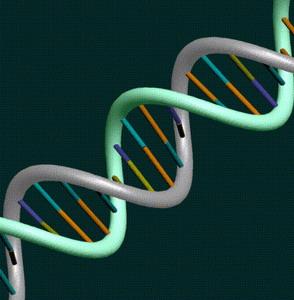 Фото №1 - Расшифрована электронная структура ДНК