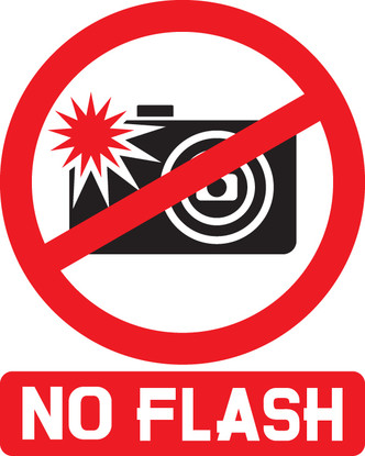 Фото №1 - Почему в музеях запрещено фотографировать со вспышкой?