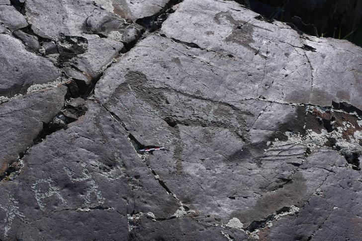 Фото №1 - Ученые разгадали тайну калгутинских петроглифов