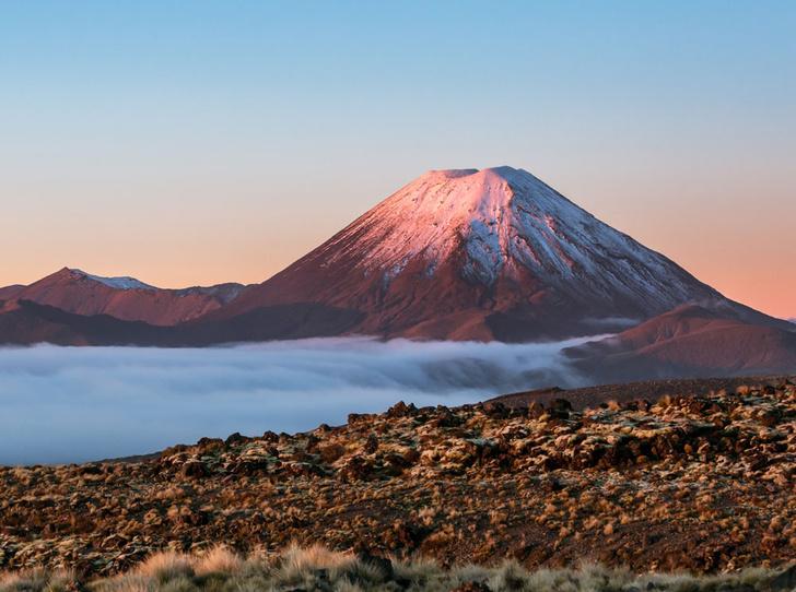 Фото №5 - «Страна длинного белого облака»: самые красивые места Новой Зеландии