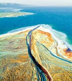 Фото №3 - Живая сила Мертвого моря