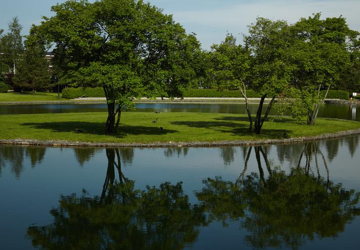 Фото №14 - Венеция, Англия, Восток: 5 садов Millennium Park