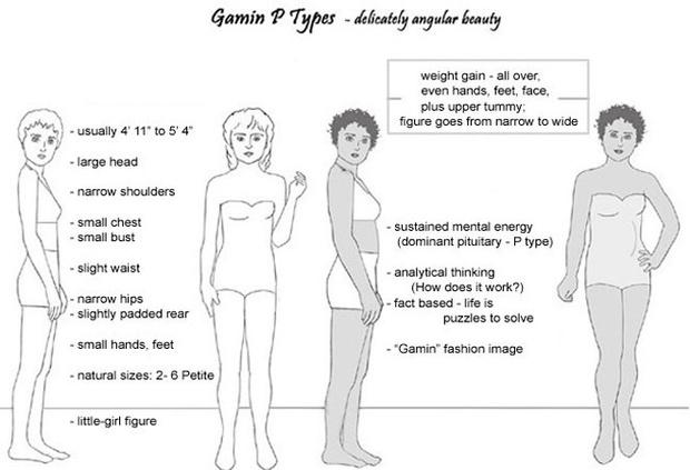 Иллюстрации и описание Гамина из методички Двин Ларсон.