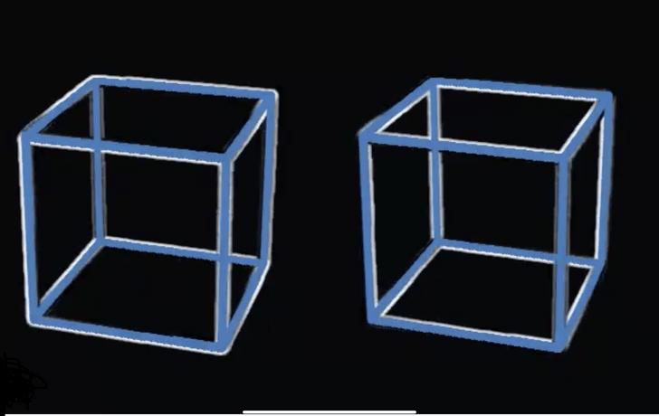 Фото №1 - Иллюзия с (не)вращающимися кубами. На этот раз— из Японии